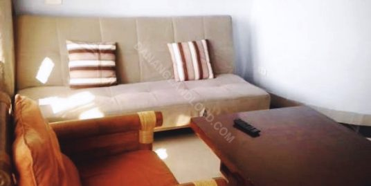Modern And New One Bedroom Apartment For Rent In Da Nang, An Thuong Area.