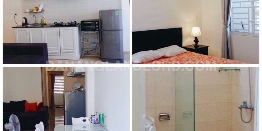 Apartment 1 bedroom cheap price in An Thuong Area