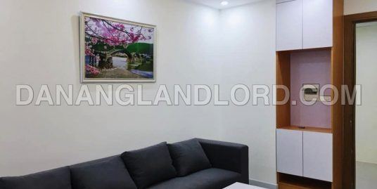 Beautiful 2 bedrooms apartment in Muong Thanh luxury – MT61