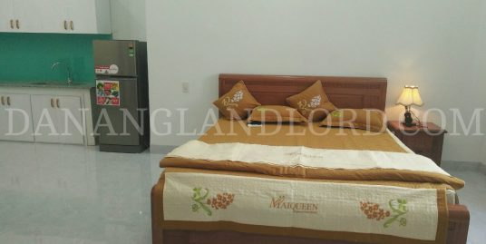 Studio apartment near Bac My An market – ATC3