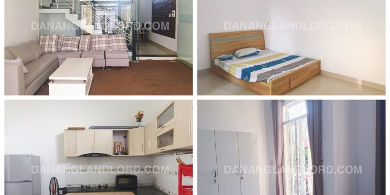 house-for-rent-5-bed-furama-0