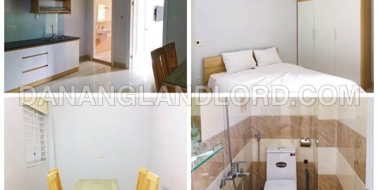 Fantastic one-bedroom apartment, 42 sqm in My An area – A464