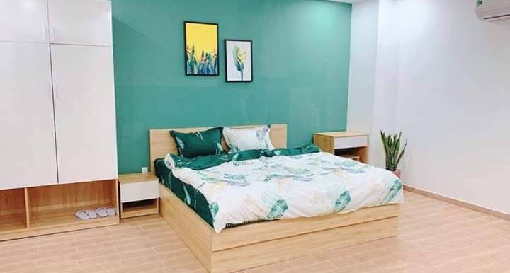 apartment-for-rent-son-tra-A561-1