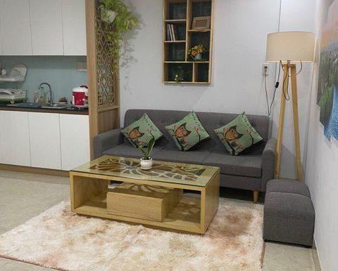 apartment-for-rent-da-nang-C036 (6)